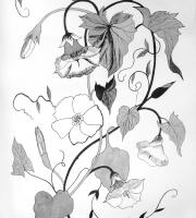 Стилизация растений в графике