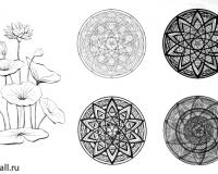 Стилизация растительных форм-5