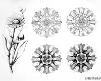Стилизация растительных форм-7