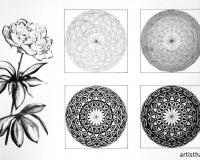 Стилизация растительных форм-15