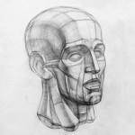 Рисование головы Экорше