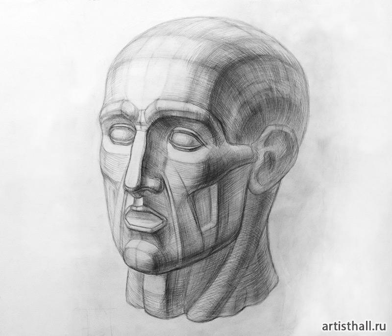 Урок рисование головы Экорше