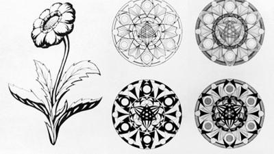 Стилизация растительных форм