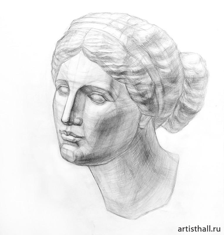 Рисунок головы Афродиты Книдской