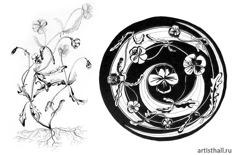 Рисунок растения с натуры и его вписывание в форму