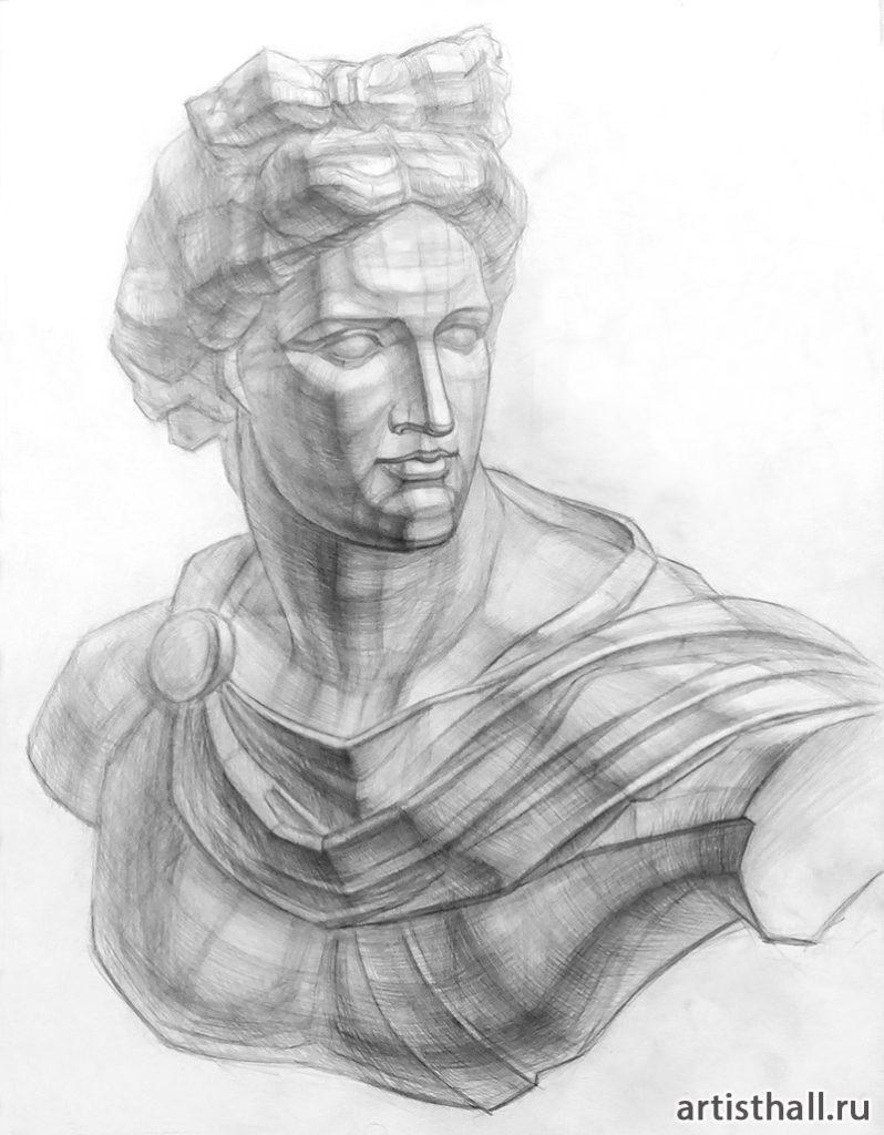 Рисунок головы с плечевым поясом Аполлона