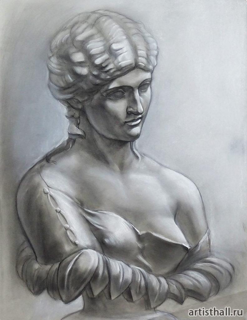 Клития рисунок головы с плечевым поясом