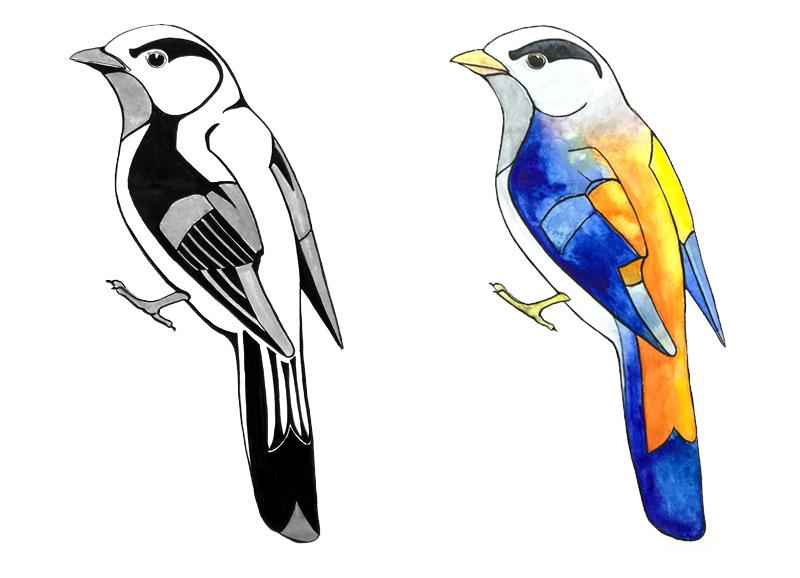 Задание Птички - графические варианты