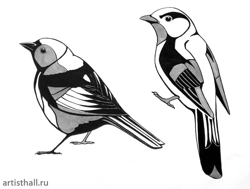 Задание Птицы - графический вариант-2