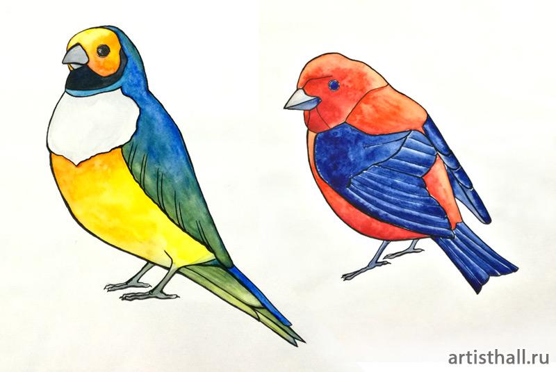 Задание Птицы - Отмывка в технике витраж-1