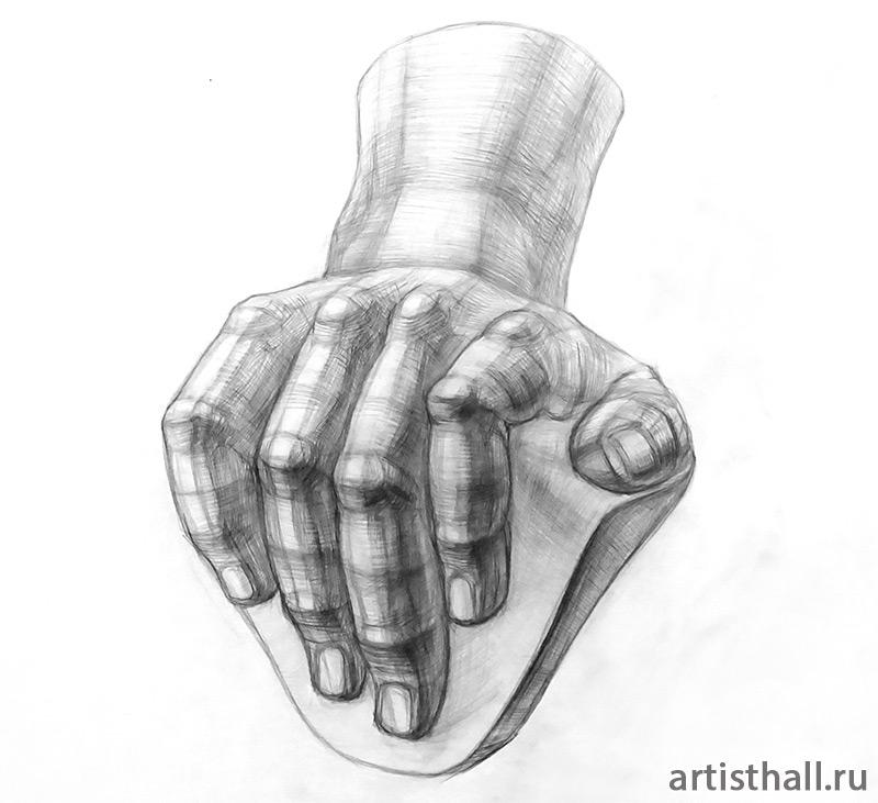 Учебный рисунок кисти