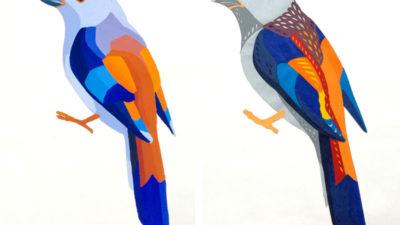 Задание Птицы. Часть вторая – цветовые аппликации
